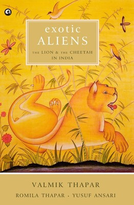 exotic aliens the lion and the cheetah in india