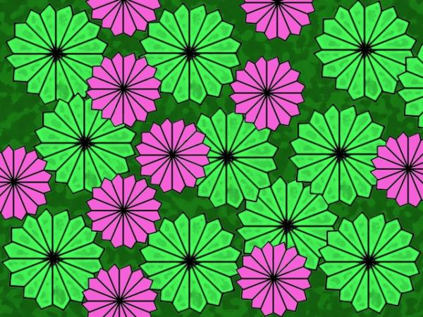 Lotus leaf (2)